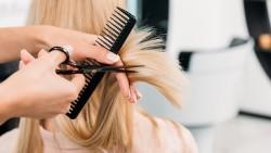 Как начать работать парикмахером и что для этого нужно